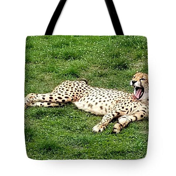 Lounging Cheetah Tote Bag
