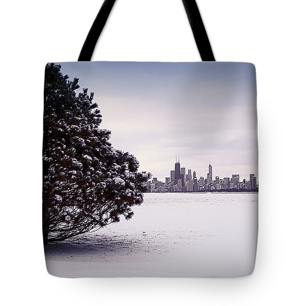Tote Bag featuring the photograph Lovely Winter Chicago by Milena Ilieva