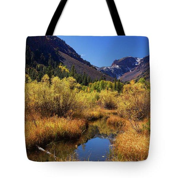 Lundy's Magic Tote Bag