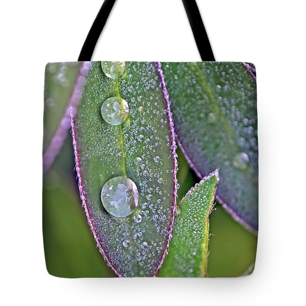 Tote Bag featuring the photograph Lupin Leaves And Waterdrops by Peggy Collins