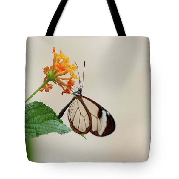 Tote Bag featuring the photograph Made Of Glass by Anjo Ten Kate