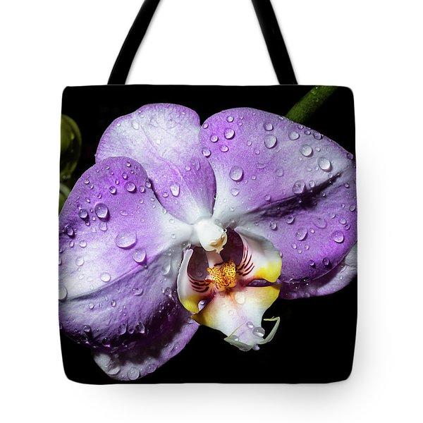 Magenta Phal Tote Bag