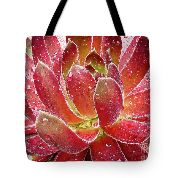 Magical Succulent Tote Bag