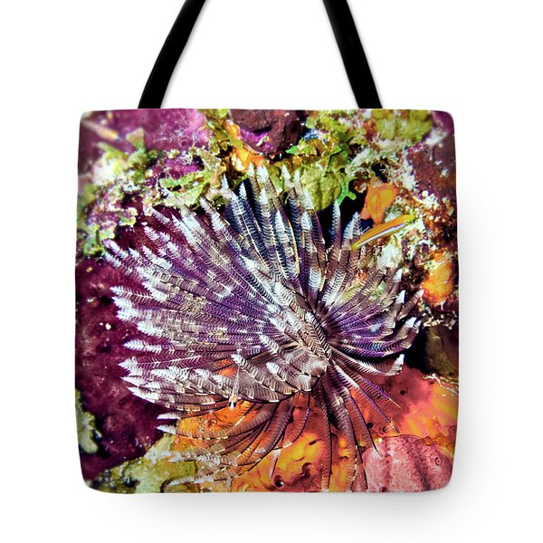 Magnificent Feather Duster Tote Bag