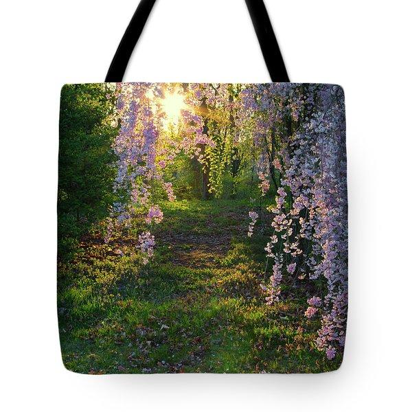 Magnolia Tree Sunset Tote Bag