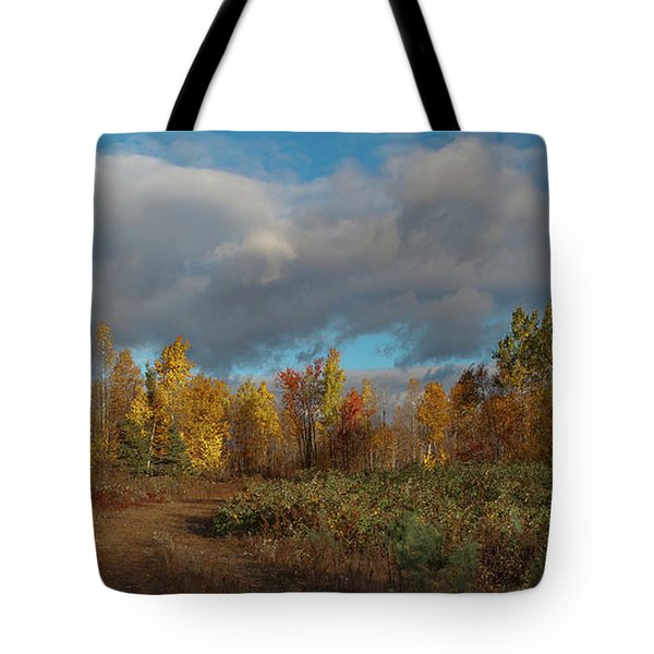 Maine Wilderness Color 2 Tote Bag