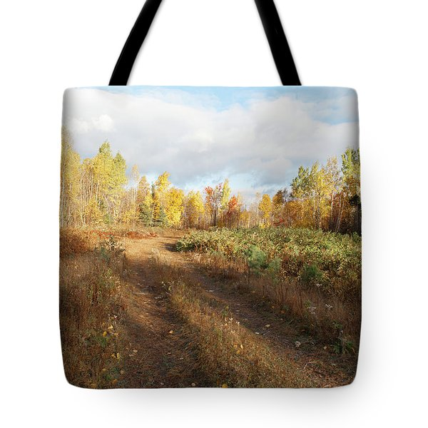 Maine Wilderness Color Tote Bag