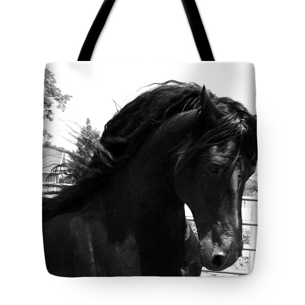 Majestic Beauty  Tote Bag