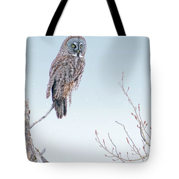 Majestic Great Gray Owl Tote Bag