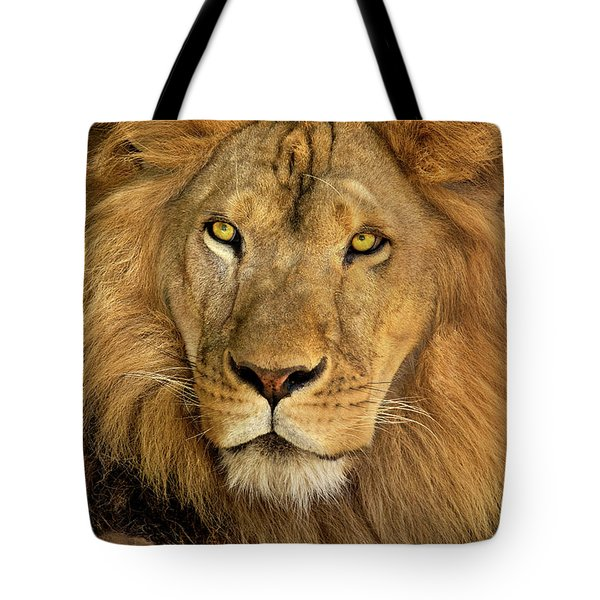 Male African Lion Portrait Wildlife Rescue Tote Bag