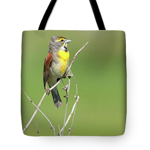 Male Dickcissel Tote Bag
