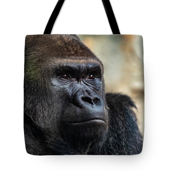 Male Western Gorilla Looking Around, Gorilla Gorilla Gorilla Tote Bag