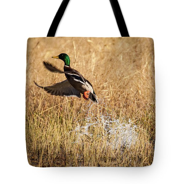 Tote Bag featuring the photograph Mallard Explosion by Jeff Phillippi