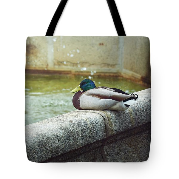Mallard Resting On The Fountain Of The Fallen Angel In The Retiro Park - Madrid, Spain Tote Bag