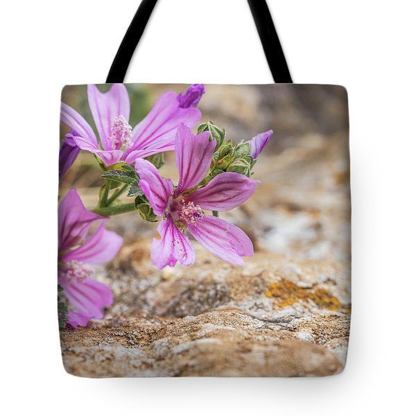 Malva Sylvestris - Spontaneous Flower Of The Tuscan Mountains Tote Bag