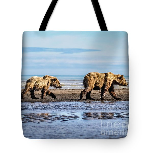 Mama Bear And Her Two Cubs On The Beach. Tote Bag