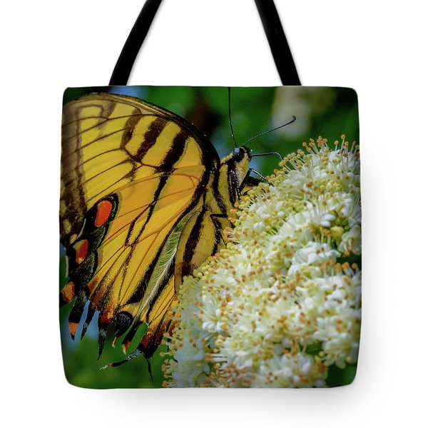 Manassas Butterfly Tote Bag