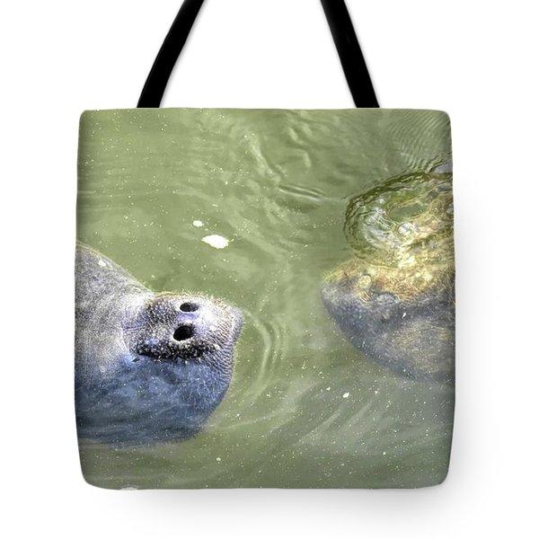 Manatee Love Tote Bag