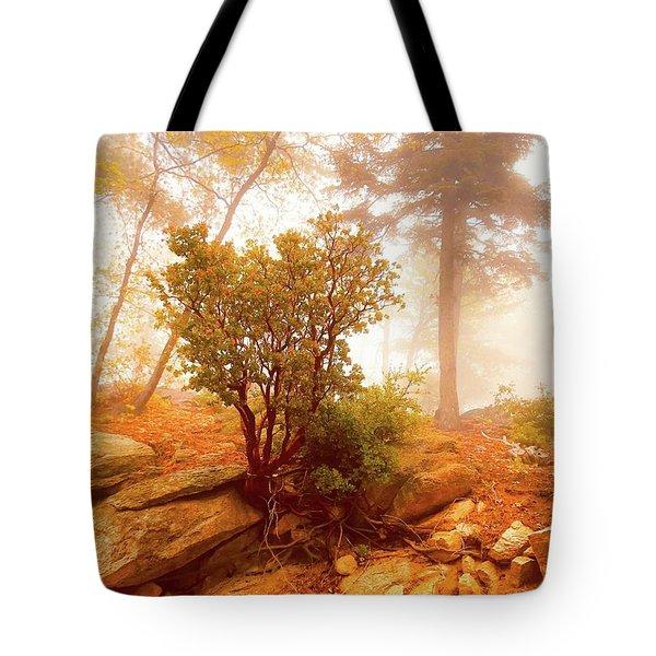 Manzanita In Light Tote Bag
