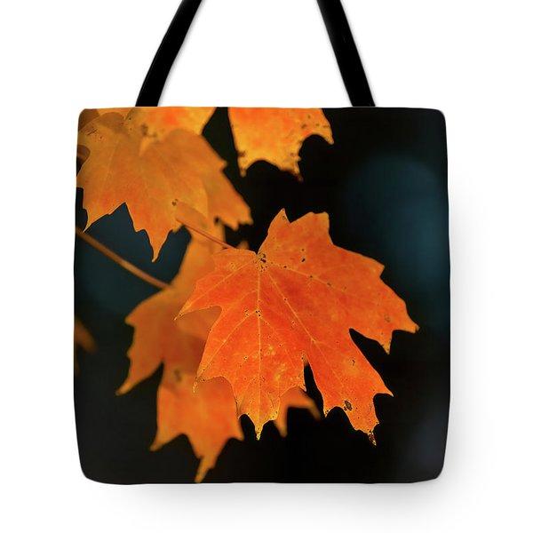 Maple-1 Tote Bag