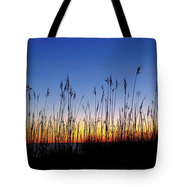 Marsh Grass Silhouette  Tote Bag
