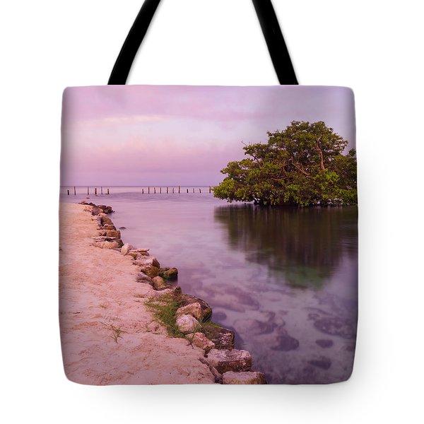 Mayan Sea Reflection 2 Tote Bag