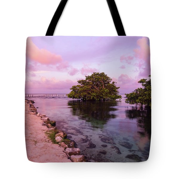 Mayan Sea Reflection Tote Bag