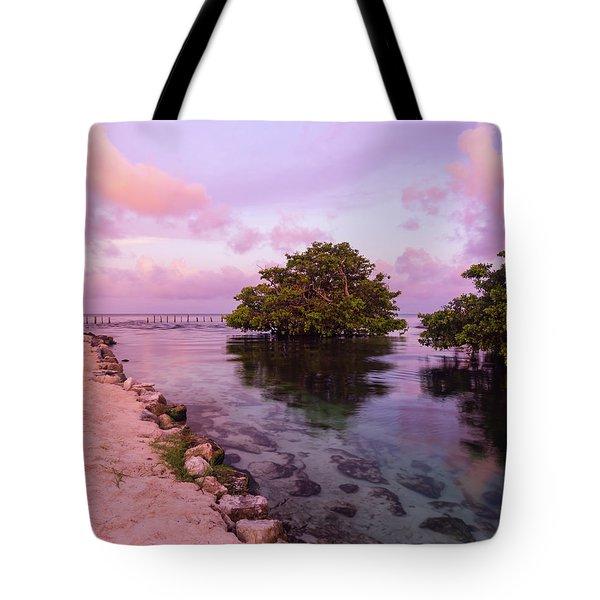 Mayan Sea Reflection Tote Bag