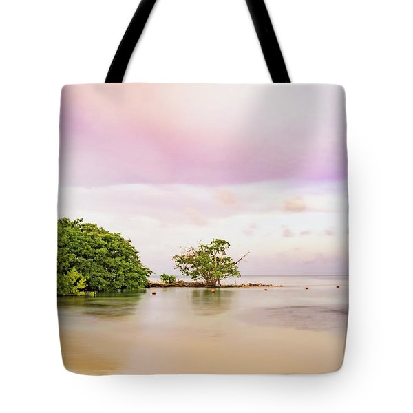 Mayan Sea Tote Bag