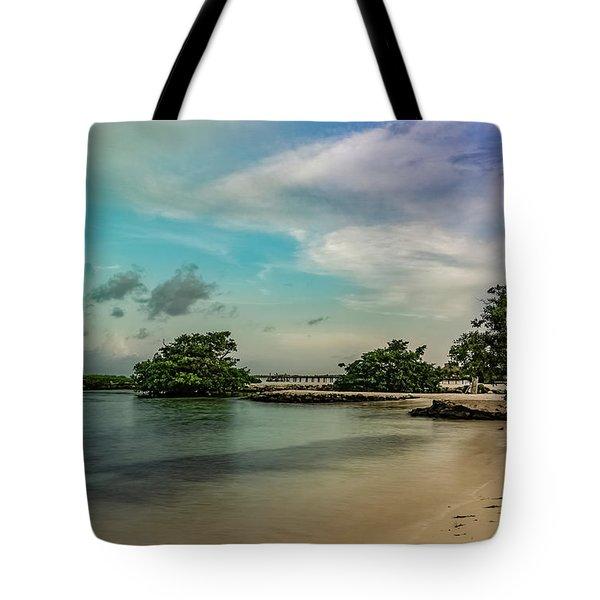 Mayan Shore 2 Tote Bag