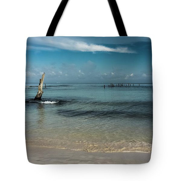 Mayan Shore 3 Tote Bag