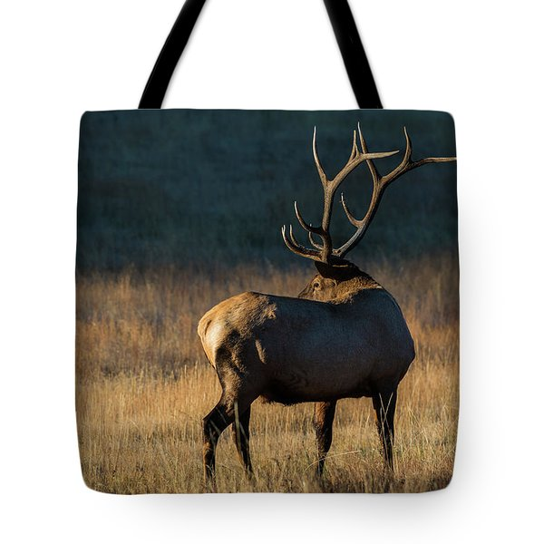 Tote Bag featuring the photograph ME3 by Joshua Able's Wildlife