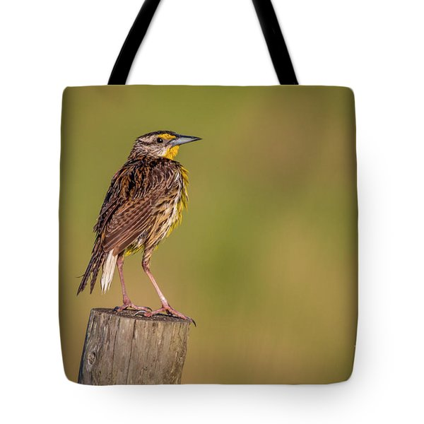 Tote Bag featuring the photograph Meadowlark On Post by Tom Claud