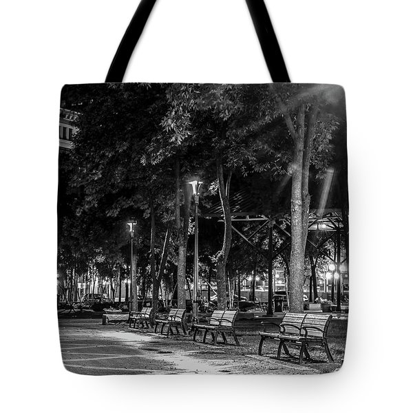 061 - Mears Park Tote Bag