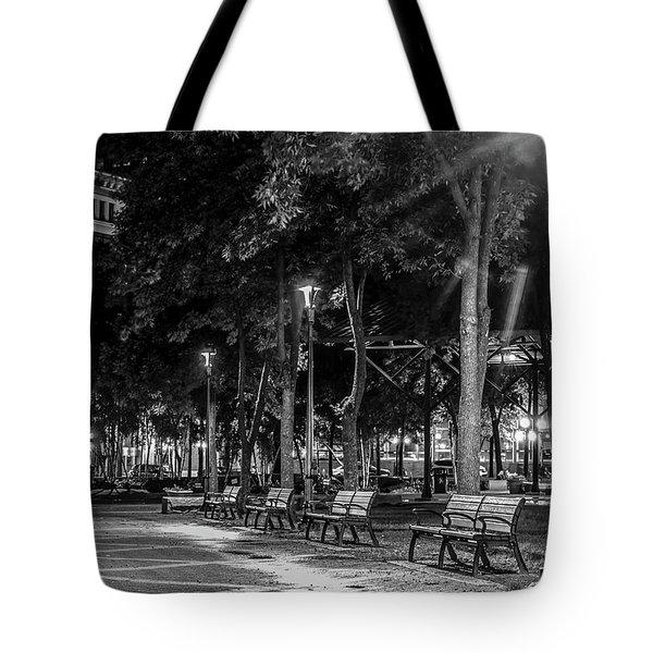 Mears Park Tote Bag