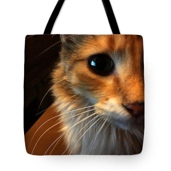 Mercy Tote Bag