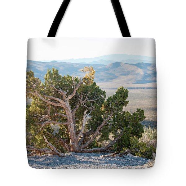 Mesquite In Nevada Desert Tote Bag