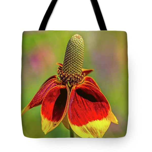 Tote Bag featuring the photograph Mexican Hat by Bernd Laeschke