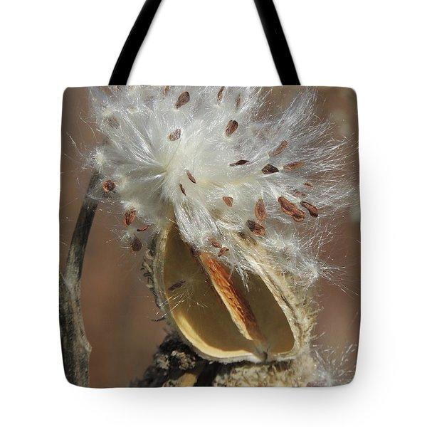 Milkweed Burst Tote Bag