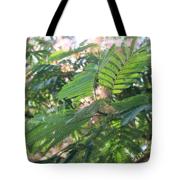 Mimosa Tree Blooms And Fronds Tote Bag