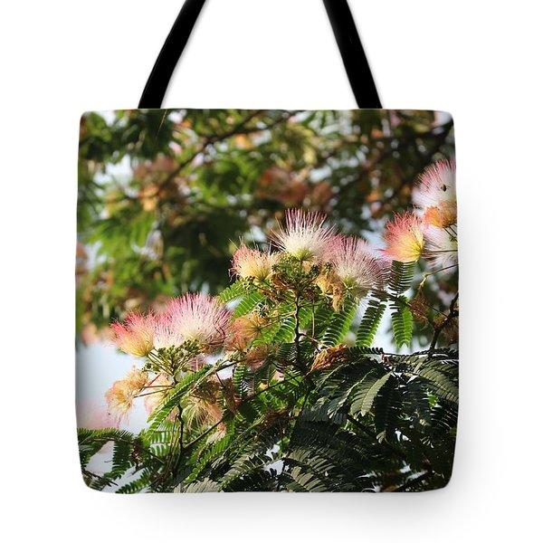 Mimosa Tree Flowers Tote Bag