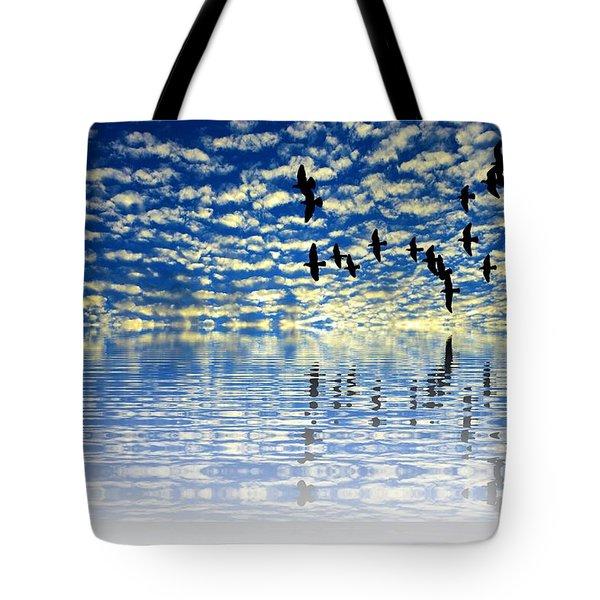 Mirroring Sky Tote Bag