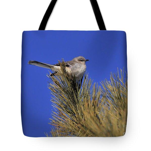 Mockingbird In White Pine Tote Bag