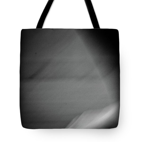 Tote Bag featuring the photograph Modern Dance 33 by Catherine Sobredo