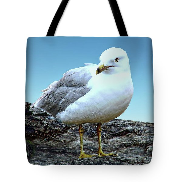 Tote Bag featuring the photograph Moewe Seagull by Anthony Dezenzio
