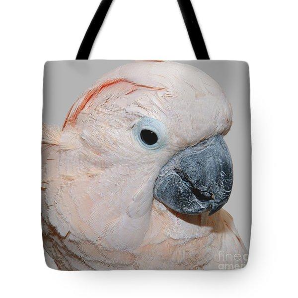 Moluccan Cockatoo Tote Bag