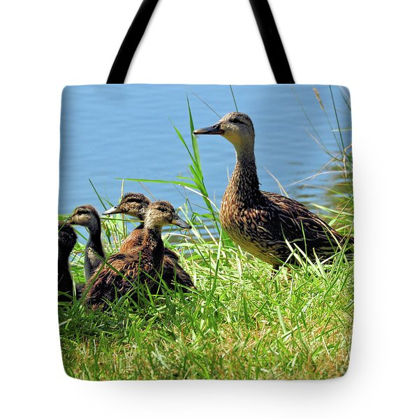 Mom And Baby Ducklings Tote Bag