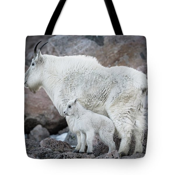 Mom And Baby Mountain Goat Tote Bag