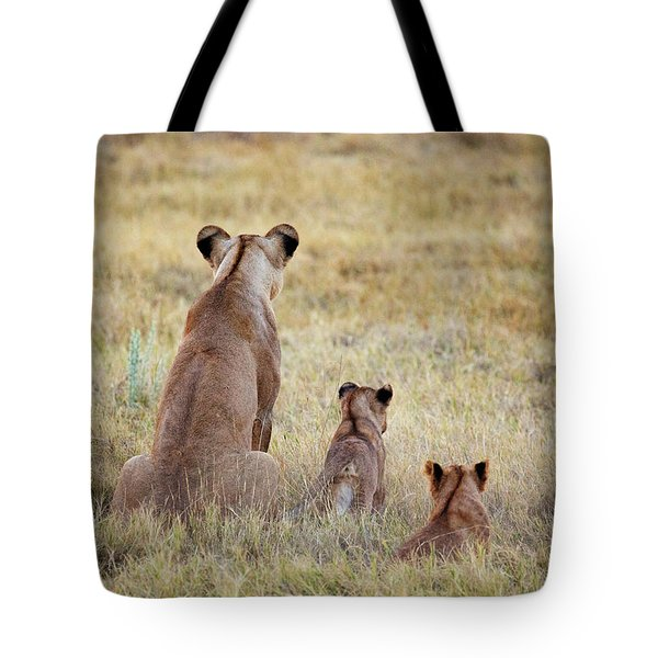 Tote Bag featuring the photograph Mom And Cubs by John Rodrigues