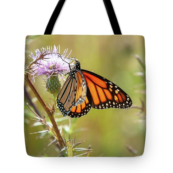 Monarch Butterfly On Thistle 2 Tote Bag